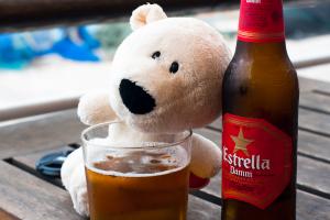 Was viele nicht wissen: Eisbären mögen Bier!